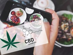 cbd-food-trends-report